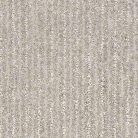 """Blue Rapids """"Pet Carpet"""" – Sterling"""